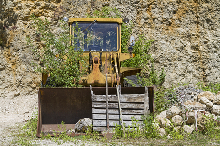 Old wheel loader, long no longer used, which is overgrown by green plants