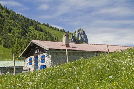 Längental에서 Brauneck 북쪽으로 올라가면 목가적 인 Tenne 목초지가지나갑니다. 에디토리얼