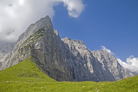Flower meadow on the Hohljoch with the Grubenkarspitze and the impressive rock walls of the Lalidererwand Standard-Bild - 96753308