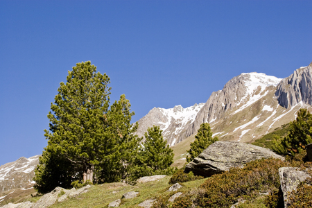 Gigantic mountain scenery in the clean valley - a branch of the Ahrn valley in South Tyrol Standard-Bild - 96864287