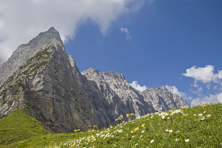 Flower meadow on the Hohljoch with the Grubenkarspitze and the impressive rock walls of the Lalidererwand Standard-Bild - 97711119