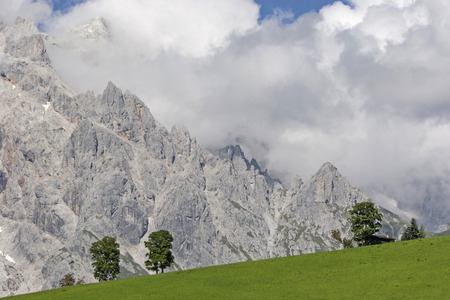Trees on a grassy hill at the feet of the mighty High King Standard-Bild - 97712957