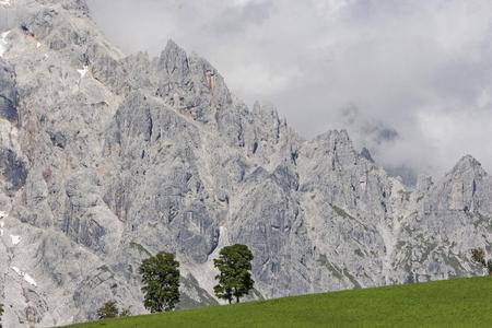 Bäume auf einem grasbewachsenen Hügel an den Füßen des mächtigen hohen Königs Standard-Bild - 98528010