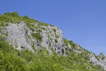lovingly designed climbing garden near Buzet in the Mirna valley Stockfoto