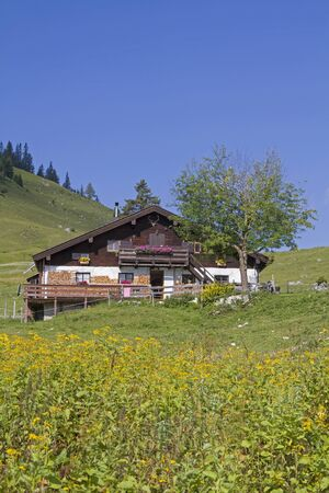 The idyllic Grabenbergalm with the small mountain chapel are in the Tyrolean part of the Mangfall mountains