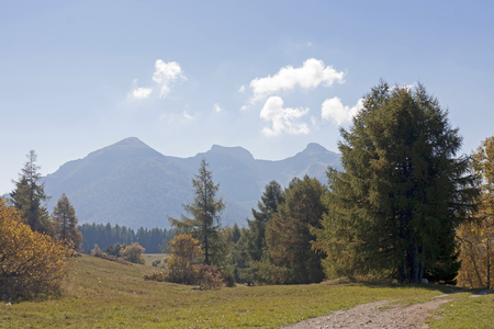 Autumn mood on the plateau of the Viote in the Bondone Mountains