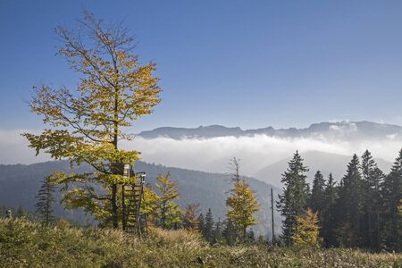 The southern ascent to Zwiesel near Bad Tölz gives us a wonderful view of the fog-covered Isarwinkel