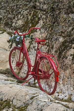 Decoratively placed red lady's wheel in a norwegian rock wall