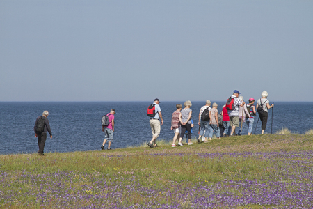 Many nature lovers walk daily through the nature reserve Morups Tange on the Swedish North Sea coast and enjoy the flora and fauna of this area.