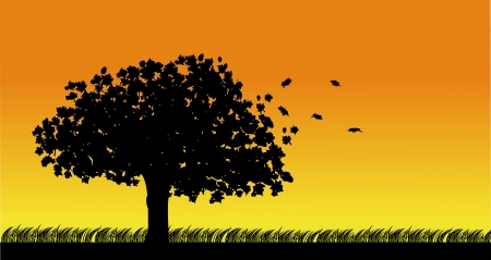 Autumn tree in the wind silhouette on orange background  Vector