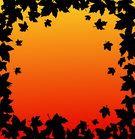 fallen leaves:  Autumn frame and autumn backgrounds with leaves Illustration