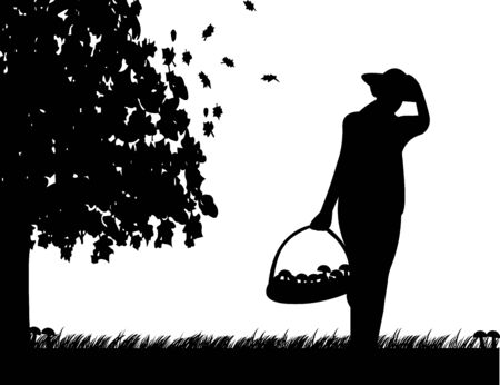 Girl hold basket of mushrooms on meadow in autumn or fall silhouette Vector