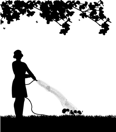 Woman gardener watering flowers, roses with hose in spring silhouette Vector