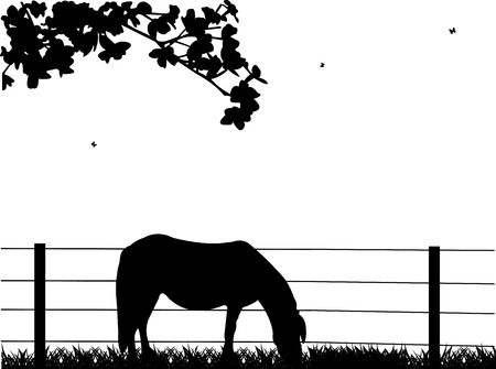 trotting: Horse on grassland silhouette layered