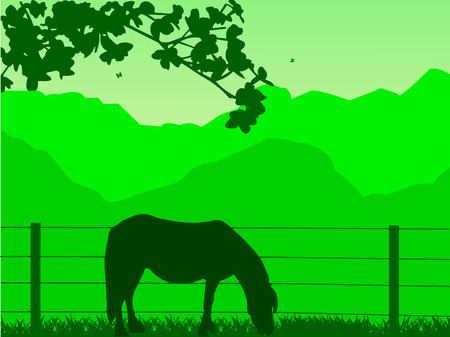 gelding:  Horse on grassland in spring on mountain silhouette  Layered vector illustration