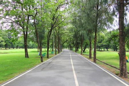 road Zdjęcie Seryjne