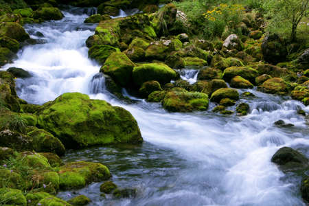 Forest stream running over mossy rocks Stock Photo - 666665