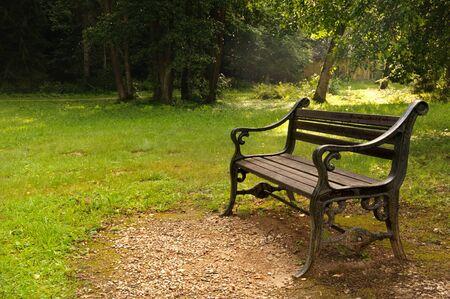 park bench summer season morning Stock fotó