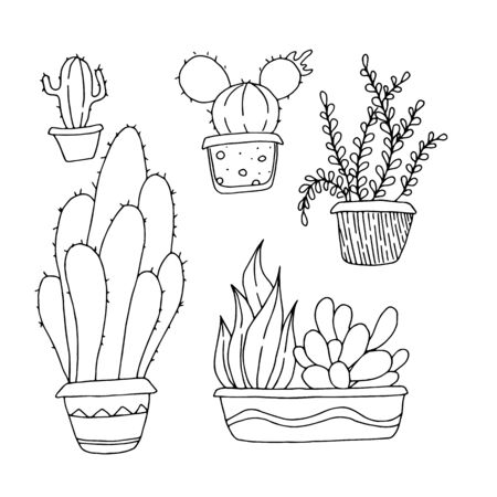 Hand drawn cactus in pots. Black and white plants isolated on white background Stock fotó - 137890838