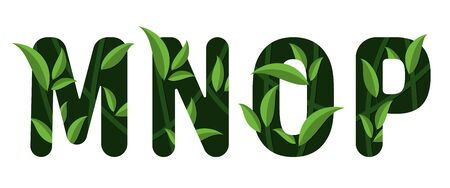 Letters M N O P of the alphabet. Leaf design. Ilustração