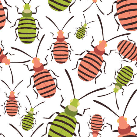 Bug colorful seamless pattern on white. Insect summer background