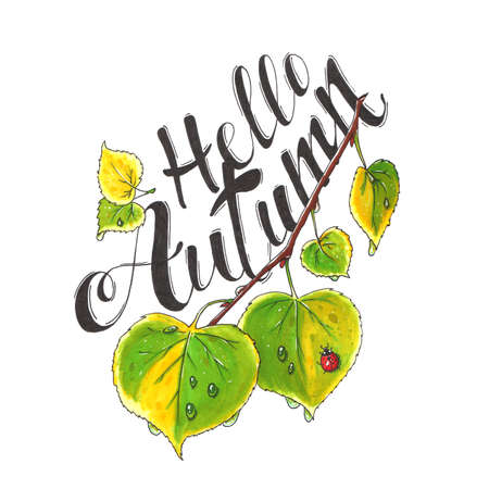 Autumn illustration. Drawn twig with leaves and text Hello Autumn.