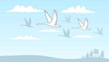lijntekening: tekening van een groep zwanen die over het veld onder de wolken tegen de blauwe hemel.