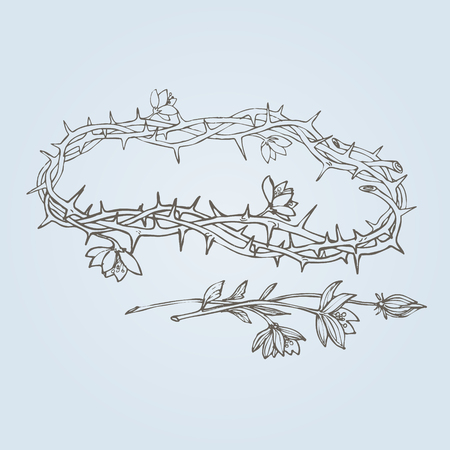 humility: flowering crown of thorns, a symbol of hope, resurrection and renewal. Eps-8
