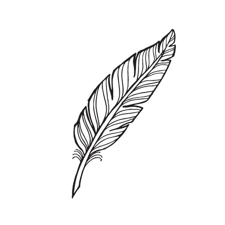 black and white feather on a white background. tattoo feather. Иллюстрация