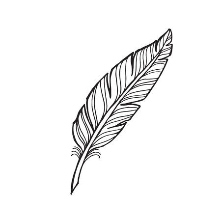 pluma de color blanco y negro sobre un fondo blanco. Tatuaje de la pluma.
