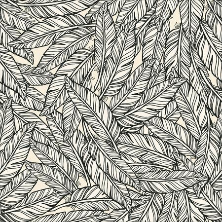 white feather: Resumen Patrón de plumas. plumas blancas con plumas de contorno negro sobre fondo blanco. Vectores
