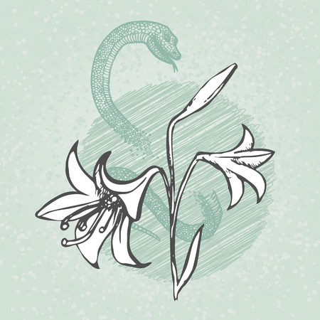 boa constrictor: Hand drawn lily with snake.