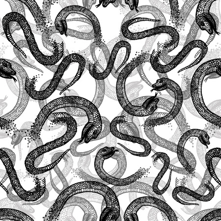 boa constrictor: Black and white seamless hand drawn pattern with snakes Illustration