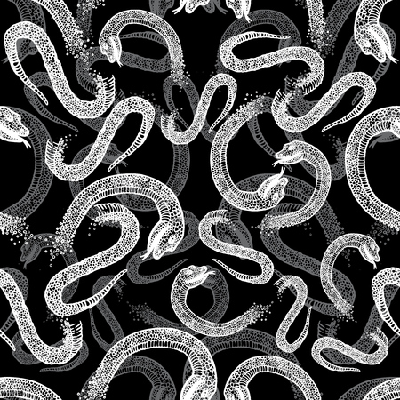 boa constrictor: Black and white seamless hand drawn pattern with snakes. Illustration