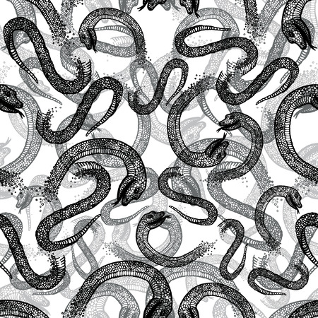 constrictor: Black and white seamless hand drawn pattern with snakes. Illustration