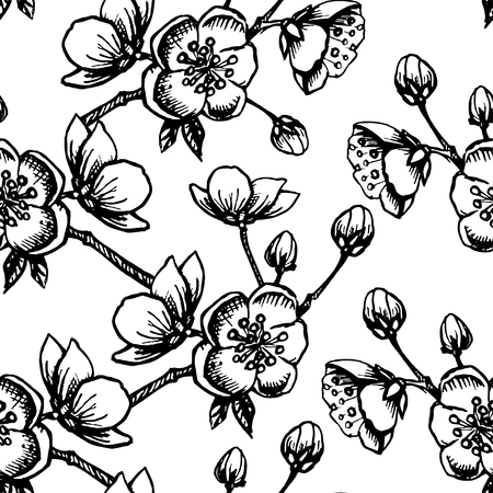 lineart: Vector Apple flower blossom hand drawn, seamless vector floral pattern, outline art for greeting card, package design cosmetic, wedding invitation, wallpaper beauty Illustration