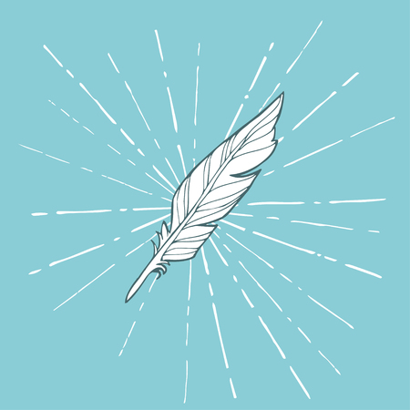 Vector hand drawn white sketched feather on blue background.