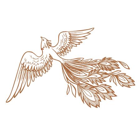 Ilustración y diseño de personajes del pájaro de fuego de Phoenix.Tatuaje de Phoenix dibujado a mano al estilo japonés y chino, Legend of the Firebird es un cuento de hadas ruso y es una criatura del folclore eslavo