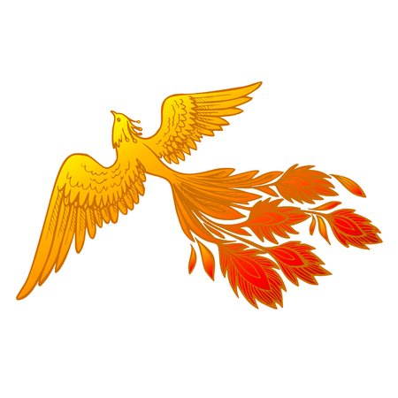 Phoenix Fire bird illustration and character design.Hand drawn Phoenix tattoo Japanese and Chinese style,Legend of the Firebird is Russian fairy tales and it is creature from Slavic folklore Illustration