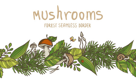 Vector seamless border with mushrooms and forest elements.