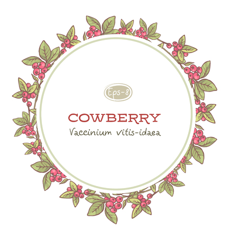 vector floral frame with cowberry, hand drawn template. Lingonberry background