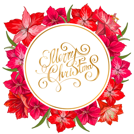Vector hand drawn hipeastrum frame. Suitable for decoration greeting cards for the Christmas and winter holidays.