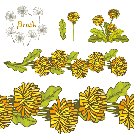 Vector hand drawn dandelion brush isolated on white background. Blossoms and leaves, branches and bird contours. Hand-written brush lettering. Spring time. Coloring book elements template.