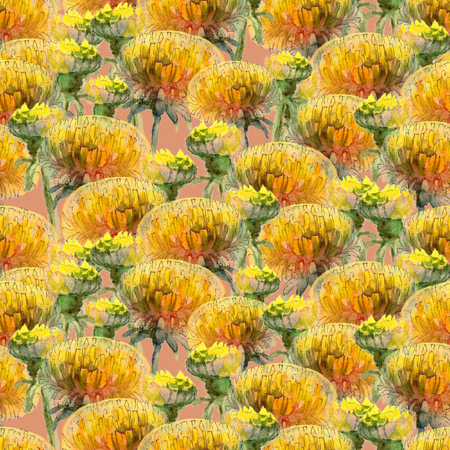 Seamless pattern of watercolor yellow dandelions on dusty pink background
