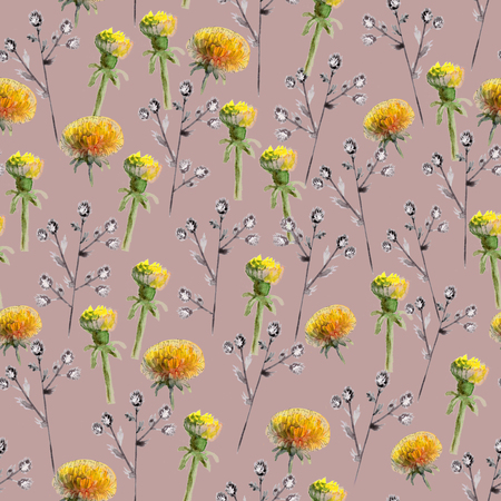 Seamless pattern of watercolor yellow dandelions and blue prickly eryngium on dark pink background Reklamní fotografie