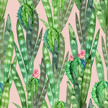 Watercolor seamless texture with flowering cacti on dusty pink background. Watercolor print and wrapping paper
