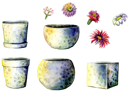Flowerpots painted with watercolors on white background. A set of different ceramic flowerpots and cactus flowers