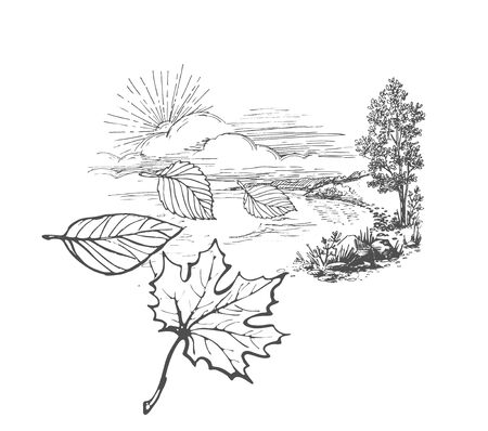 Hand-drawn sketch on an autumn theme - landscape with trees, sun and flying away fallen leaves Archivio Fotografico - 129115932