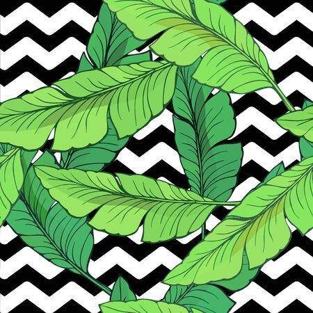 Seamless background with hand-drawn banana leaves against black and white broken zigzag lines
