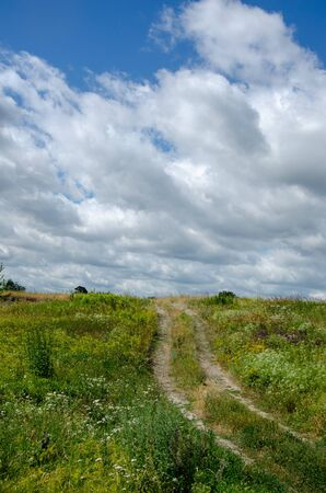 summer rural landscape with a blossoming meadow, road and clouds.